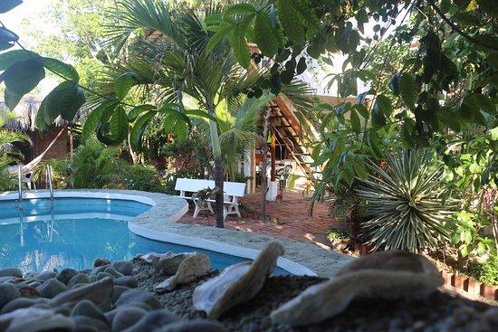 Guest House La Posada del Sueco: pool and garden