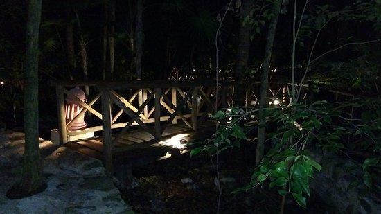 Iberostar Tucan Hotel: Sendero de noche : hermoso !!!