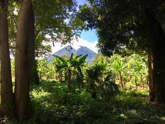 Finca San Juan de la Isla: photo3.jpg
