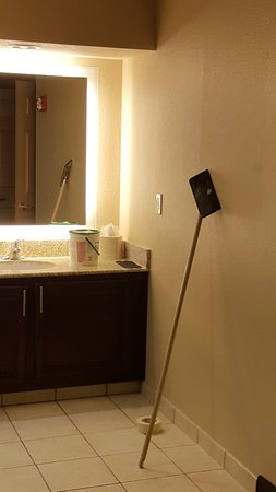 Homewood Suites by Hilton Baltimore-BWI Airport: 20171118_225615_large.jpg