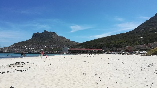 Hout Bay, South Africa: IMG_20171118_144507_large.jpg