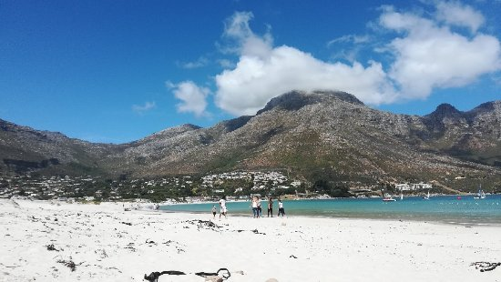 Hout Bay, South Africa: IMG_20171118_144503_large.jpg