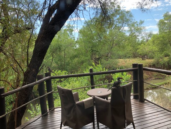 Madikwe Game Reserve, Republika Południowej Afryki: photo4.jpg