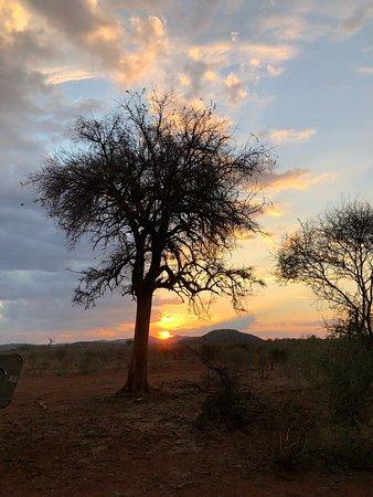 Madikwe Game Reserve, Republika Południowej Afryki: photo6.jpg