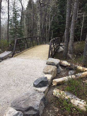 Pincher Creek, Canada: IMG_1288_large.jpg