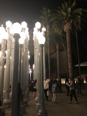 Los Angeles County Museum of Art: photo3.jpg