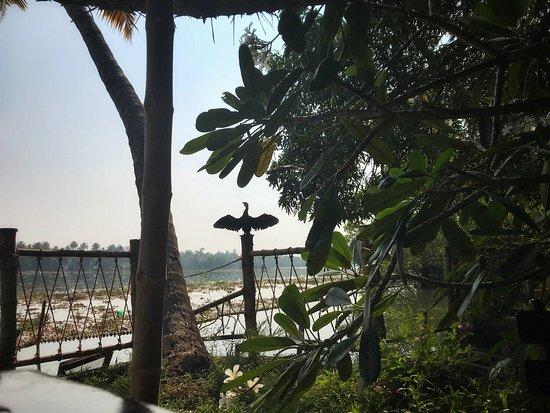Les 3 Elephants Cherai Beach: photo2.jpg