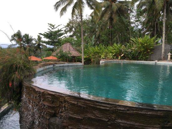 1 grosser pool bild von puri dajuma cottages pekutatan tripadvisor. Black Bedroom Furniture Sets. Home Design Ideas
