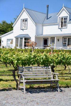 Martinborough, New Zealand: Must visit place! 😍👍🏼