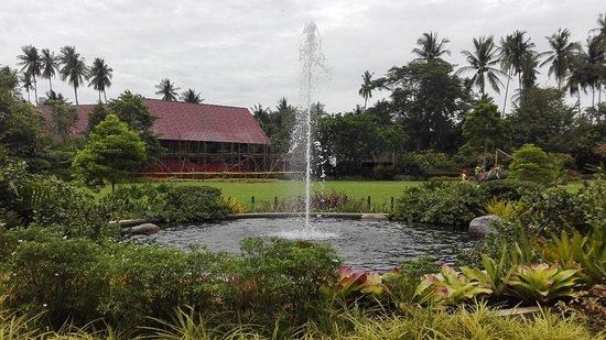 Villa Escudero Resort: IMG_20170928_122804_large.jpg
