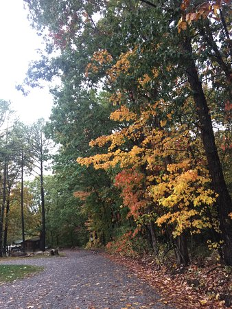 Wytheville KOA: Fall hits the campgrounds