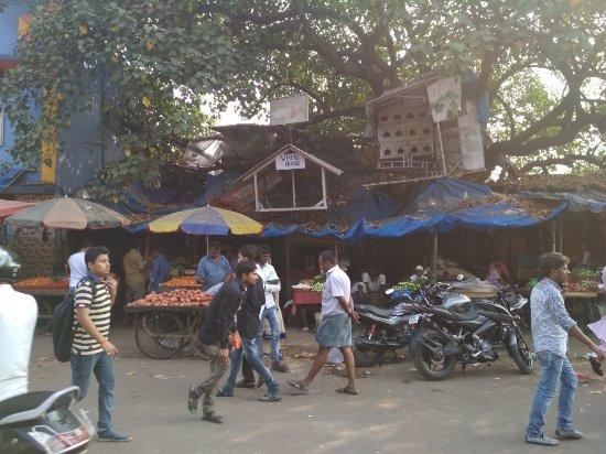 Slumgods Tours And Travel Mumbai Maharashtra