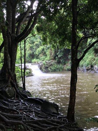 Maleny, Avustralya: Gardners Falls