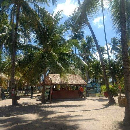 Carneiros Beach: IMG_20171114_221052_569_large.jpg