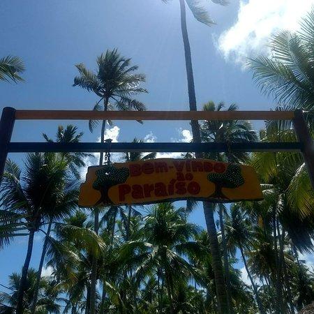 Carneiros Beach: IMG_20171114_221052_571_large.jpg