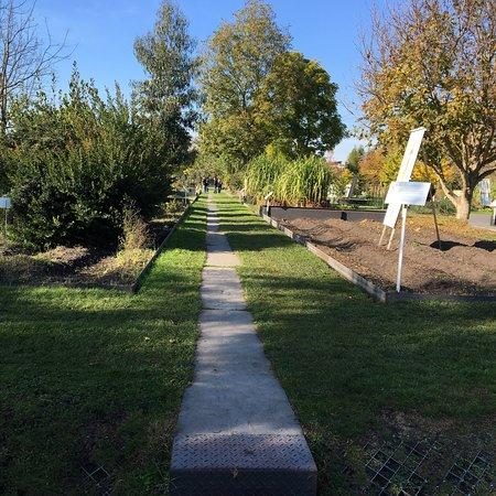 Picture of jardin botanique de bordeaux for Bordeaux jardin botanique