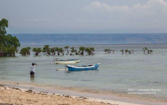 Walakiri beach - East Sumba