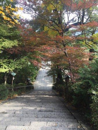 Tenri, Japón: 紅葉🍁