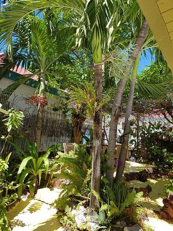 Terre-de-Haut, Guadeloupe: La Fringale