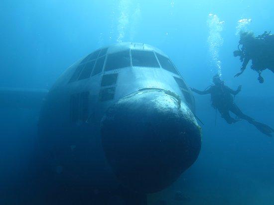 Aqaba international dive center jordan updated 2018 top for Aqaba dive
