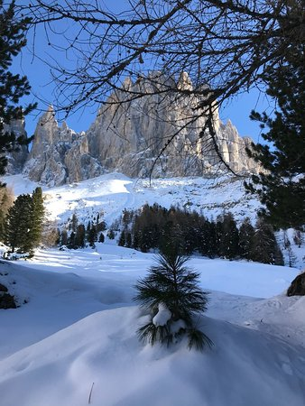 Tiers, Italy: IMG-20171118-WA0051_large.jpg