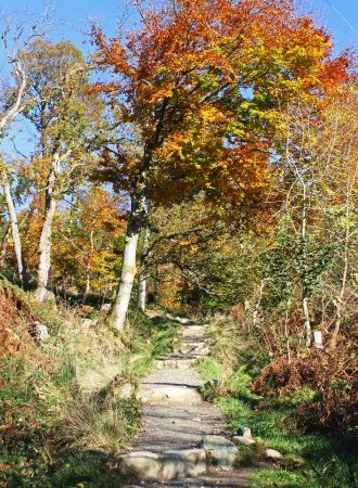 Callander, UK: At the start of the path to the summit of Ben A'an.