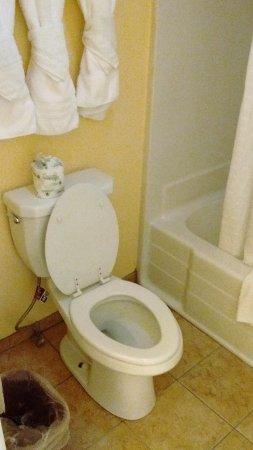 Búfalo, WY: Salle de bain / chambre 216