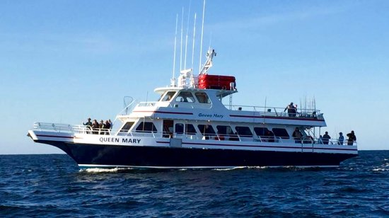 Queen Mary Party Fishing Boat & Charters