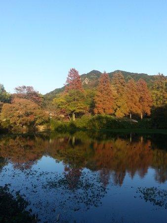 Okusuma Park