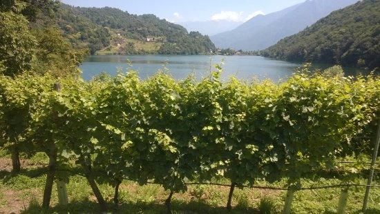Angolo Terme, Italien: nei d 'intorni