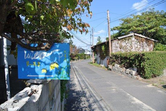 Ohmishima Limone