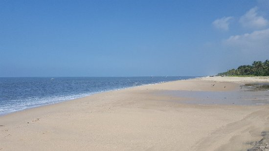 Marari Beach: 20171116_103001_large.jpg