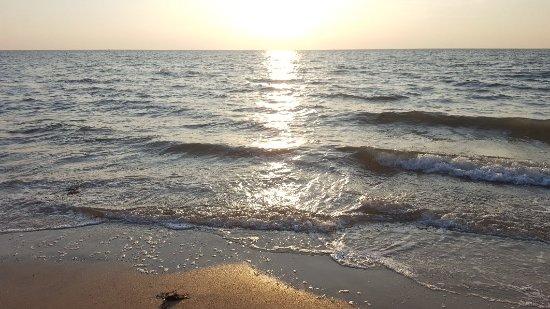 Marari Beach: 20171113_173025_large.jpg