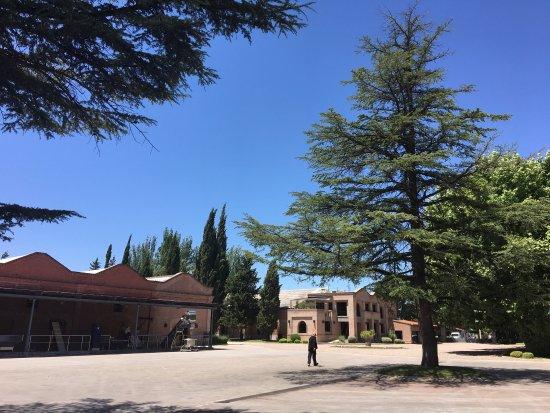 Luján de Cuyo, Argentina: photo3.jpg