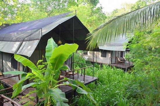 Entrance - Picture of River Glamping by Gaga Bees, Udawalawa - Tripadvisor
