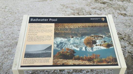 Badwater: 20171117_141106_large.jpg