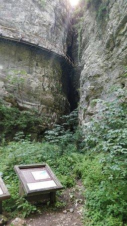 Krnica, Slovenia: Pokljuka Gorge