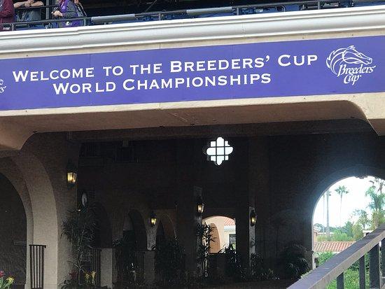 Del Mar Ractrack ~ Breeders Cup 2017