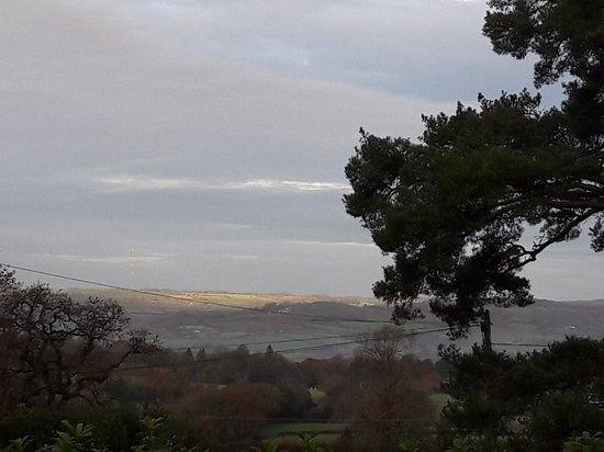 Raymonds Hill, UK: 20171119_081941_large.jpg