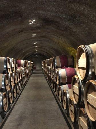 Oakville, Kalifornia: The Cellars