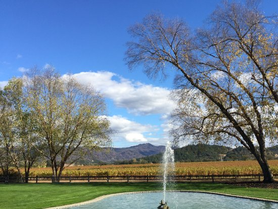 Oakville, Californien: The fountain and vineyards