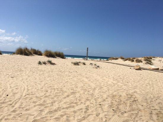 Playa de Zahara de los Atunes: photo9.jpg