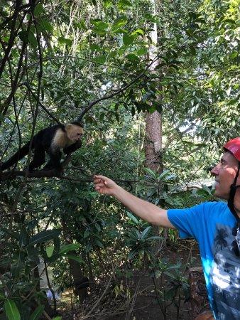 Artola, Kostaryka: photo2.jpg