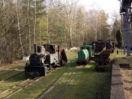 Starachowice, Pologne : transport wewnętrzny