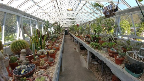 New Orleans Botanical Gardens La Updated 2018 Top Tips Before You Go With Photos Tripadvisor
