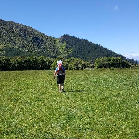 Linkwater, New Zealand: IMG_20171119_195754_039_large.jpg