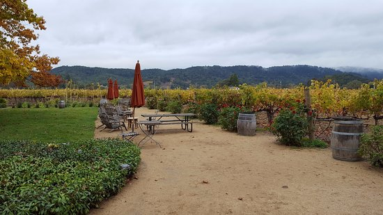 O'Brien Estate Winery: Outside tasting area and vineyards