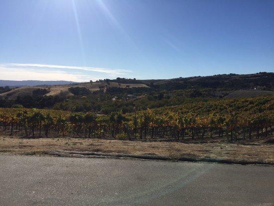 Ecluse Wines: photo8.jpg