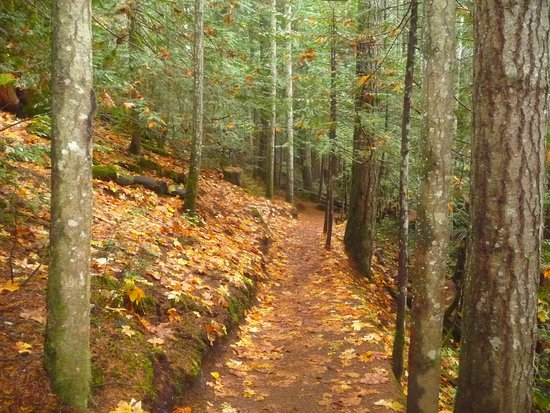 Courtenay, Canadá: easy trail.