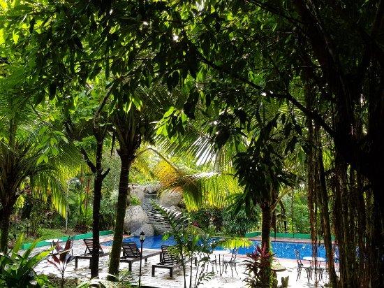 Hotel Kokoro Arenal: 20171101_081144_large.jpg